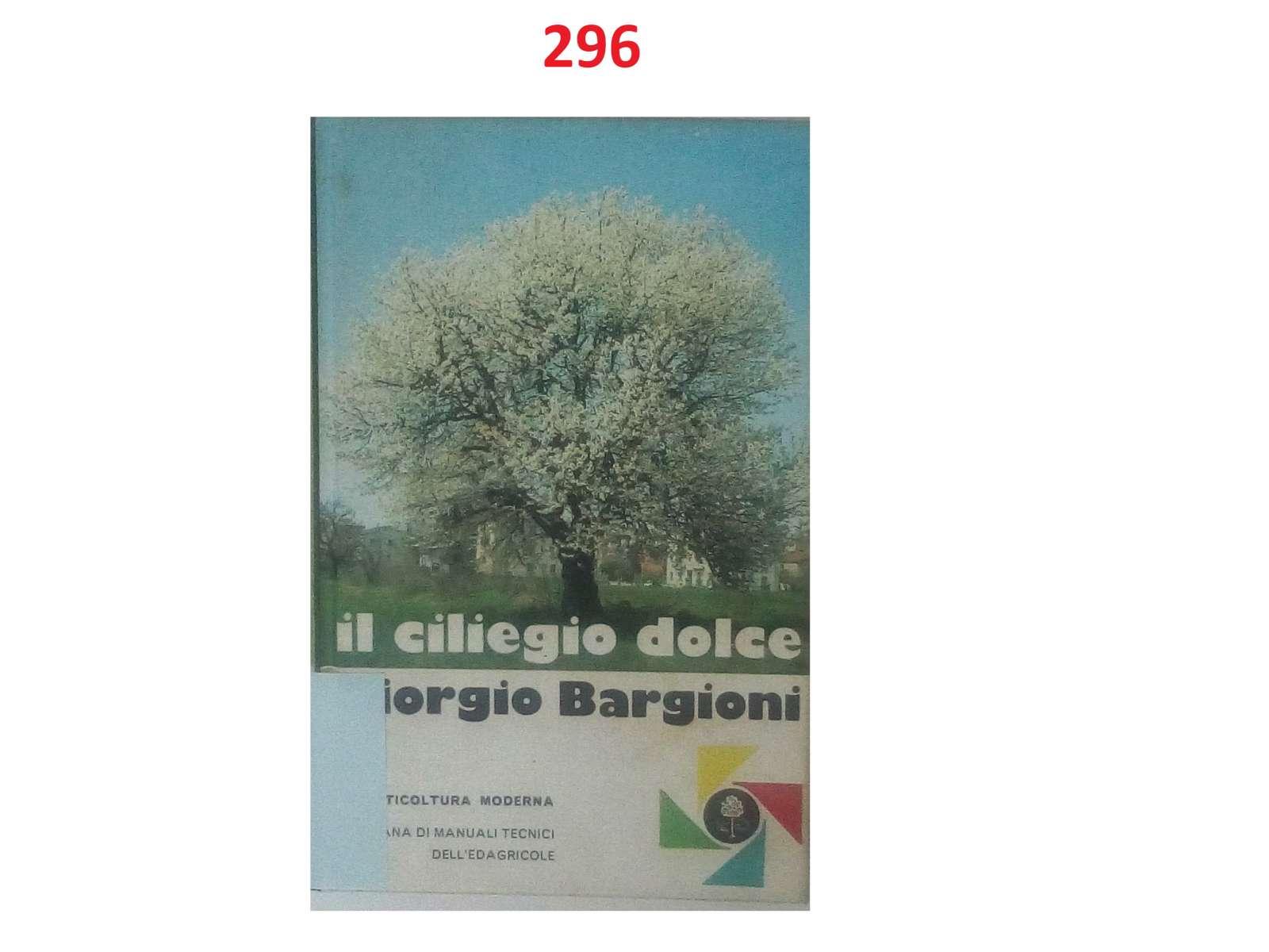 0336-imgp3009