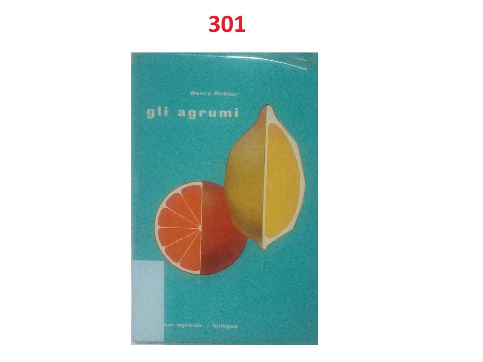 0341-imgp3014