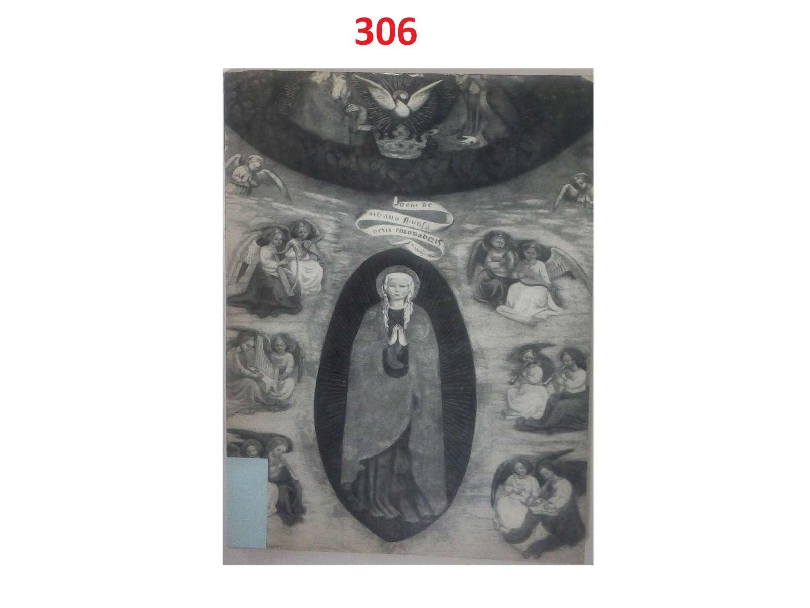 0346-imgp3019
