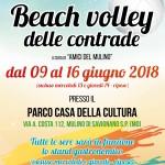 18c0011_loc_volley_2018_low